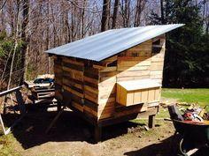 Chicken Coops Made From Pallets | DIY Pallet Chicken Coop