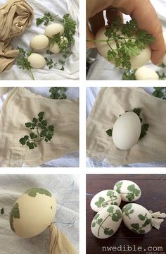 Step-by-step instructions for elegant botanical Sunprint-style naturally dyed eggs. These turned out great!