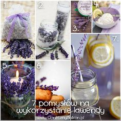 7 sposobów na wykorzystanie lawendy #lawenda #lavender Garden Inspiration, Food Inspiration, Hand Lotion, General Crafts, Wedding Party Favors, Fresh Flowers, Sweet Recipes, Harvest, Diy And Crafts