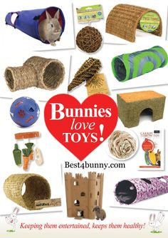 Keeping bunnies entertained, keeps them healthy! Find lots of great toys here http://best4bunny.com/productcat/fun-things/ Overseas click here http://astore.amazon.com/best4bunny-20?_encoding=UTF8&node=5