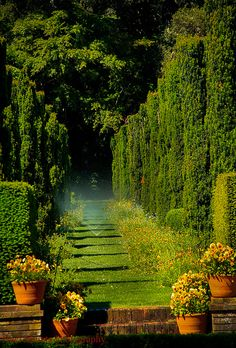 Filoli estate in Woodside, California