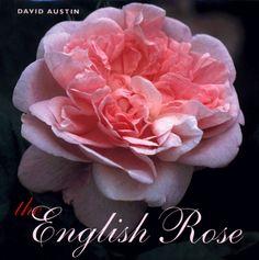 The English Rose by David Austin http://www.amazon.com/dp/067088880X/ref=cm_sw_r_pi_dp_IAXEvb10GGP28