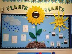 Plants Pollen Seeds Grow Flower Leaf Water Rain Clouds Soil Display C Primary Science, Primary Teaching, Teaching Resources, Primary Resources, Class Displays, School Displays, Early Years Displays, Parts Of A Flower, Parts Of A Plant