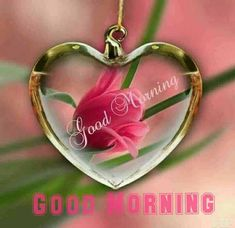 If you want to send good morning love images to your friends and relatives then you have the best good morning images available on our website. Good Morning Love Gif, Cute Good Morning Quotes, Good Morning Cards, Good Morning World, Good Morning Photos, Morning Pictures, Good Morning Wishes, Gd Morning, Morning Sweetheart