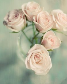 Shabby chic flower photograph rose pink mint by dullbluelight, $30.00