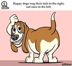 cool-gif-animal-facts-dog