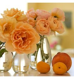 """Just Joey, Jude the Obscure, and Dr. Brownell"" peach and apricot-colored roses via Rose Notes"