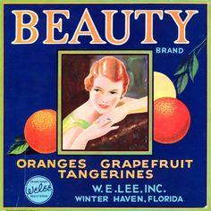 Tampa Florida Buxom Orange Citrus Fruit Crate Label Art Print