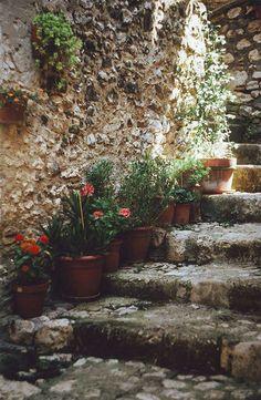 garden stairway.