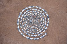 Mussel Shell Spiral by JRT Pickle, via Flickr