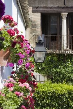 Patios de Córdoba  Durante el mes de mayo se celebra en Córdoba la fiesta de los patios cordobeses.