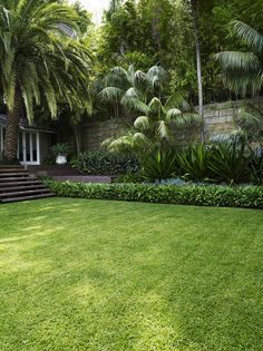 Lawn with stairs | by William Dangar & Associates