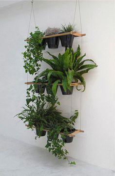 hanging houseplant planter shelves; Gardenista /