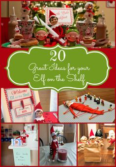 20 Great Elf on the