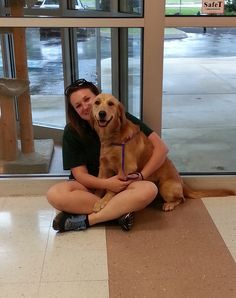 Autumn and Shannon at All Kreatures #goldens #goldenretreiver #dogboarding