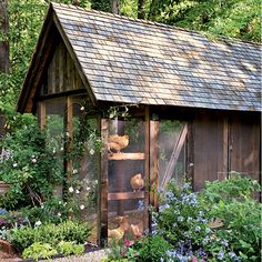 chicken coop in the garden.
