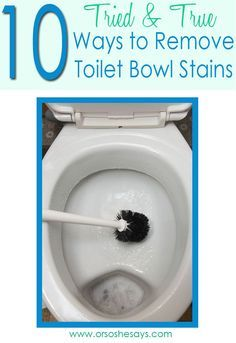 10 Ways to Remove Toilet Bowl Stains - Or so she says...