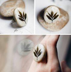pebble and leaf