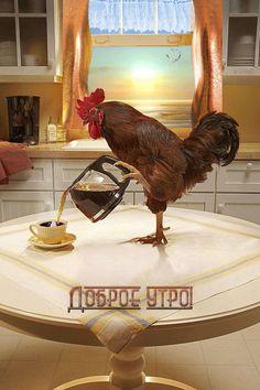 Прикольная картинка Доброе утро !