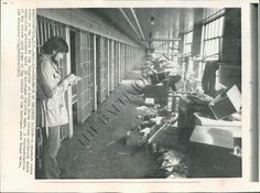 This is a press wire photo of a reporter looking at the aftermath of the Attica Prison Rebellion in September 1971.
