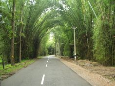 Wayanad is one of the most beautiful road trip destinations in India. You really need to drive to this place to take in the abundance of natural beauty around this green paradise. The pristine locales of Wayanad are the perfect stress busters that can make you forget all your worries in life!