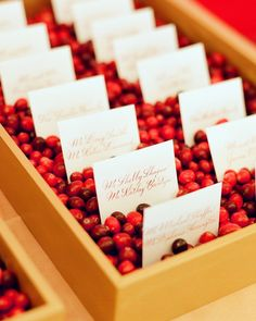 Golden trays were filled with cranberries to hold the escort cards (calligraphed by Arney Walker) in place.  Planning and Design by Pineapple Producrions.  Photography by Kate Headley.