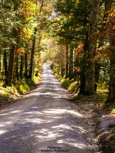 Country road (Great Smoky Mountains National Park, Tennessee) by Michelle McCormick cr.c.