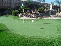 Backyard Putting Green Design Ideas, Pictures, Remodel, and Decor - page 7