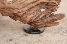Driftwood Sculpture Organic Modern 5