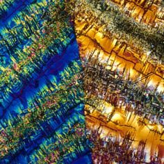 Microscopic Images of Alcoholic Drinks - InsaneTwist Martini