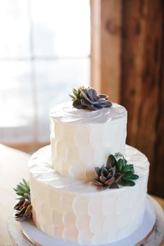 Natural wedding cake, textured white buttercream, succulents // Paige Winn Photo