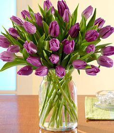 30 Purple Tulips Flower Bouquet from ProFlowers