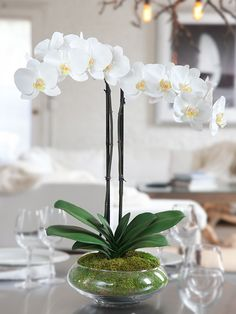 """White Silk Phalaenopsis Orchid Arrangement - Nature"" I need some artificial orchids for beauty that I can't kill."