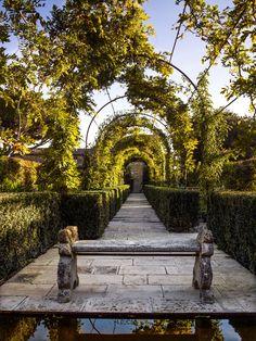 Under the Tuscan Sun: Garden Designer Luciano Giubbilei's Italian Oasis