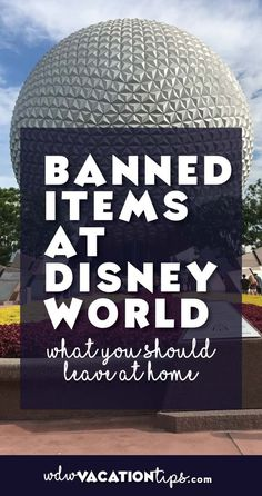 Did you know there is a list of items banned from Disney World ?!?! Some of the things surprised me.