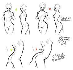 Female bodies