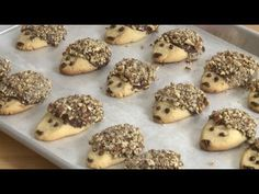 Cookie Recipes - How to Make Hedgehog Cookies