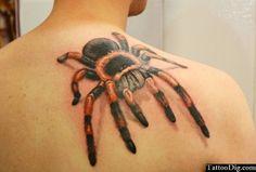 3D Tarantula Tattoo Back Shoulder