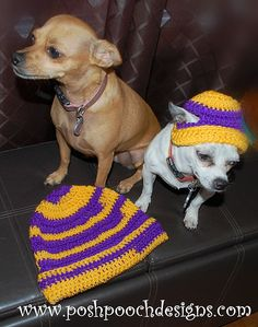 Ravelry: Team Spirit Hats for humans and Dogs pattern by Sara Sach