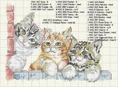 Schema punto croce Gattini