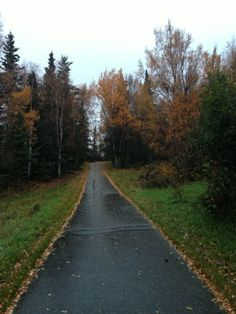 The bike trails go all over Anchorage, it is great to use both summer and winter.