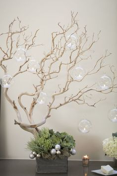 manzanita // hanging glass bulb candleholders // winter wedding