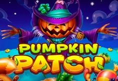 Pumpkin Patch Online Casino Slot at NightRush online casino Online Casino Slots, Online Casino Games, Casino Promotion, Pumpkin, Halloween, Pumpkins, Squash, Spooky Halloween