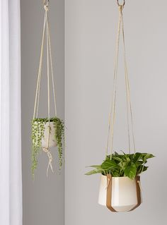 Set of 2 leather plant hangers - M Forioso - Ecru/Linen