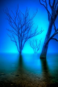 Foggy Dawn at Lake Eildon in Victoria, Australia