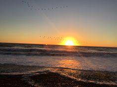 Puesta de sol en Pacífico sur Reserva el Yali, Chile