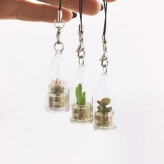 Mini Cactus Keyring .. Our MINì reseller for the UK