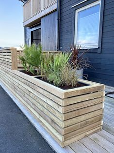 Outdoor Planter Boxes, Garden Planter Boxes, Outdoor Pergola, Outdoor Pool, Outdoor Decor, Outside Plants, Backyard Layout, Swimming Pool Landscaping, Rooftop Garden