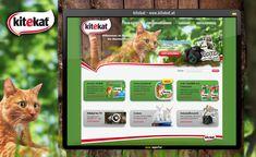 Konzept, Design und Umsetzung eines Relaunch der Brand Website, sowie eine Betreuung des Online-Marketings. Marketing, Website, Design, Concept