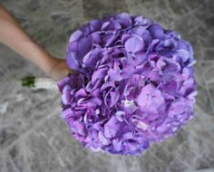 Purple Hydrangea Bouquet | Leanne & Adam